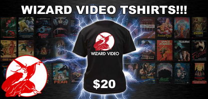 Click Me to Get Your Wizard T-Shirt!